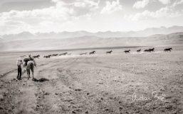 Kyrgyzstan_130729_165030-4.jpg