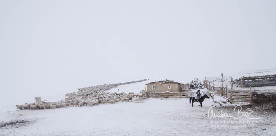 Kyrgyzstan_150222_100655.jpg