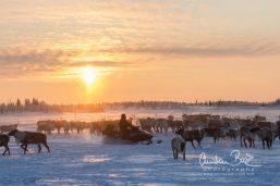 Nenets_160126_130210-3.jpg