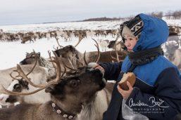 Nenets_160212_112004-2.jpg