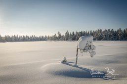 Scandinavia_130208_115750-1.jpg