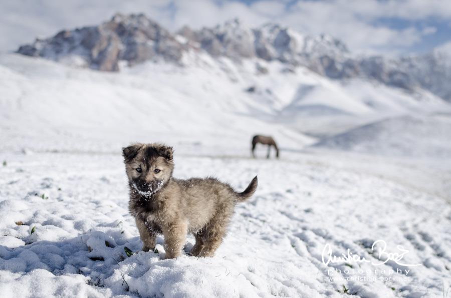 Kyrgyzstan_150616_075230.jpg