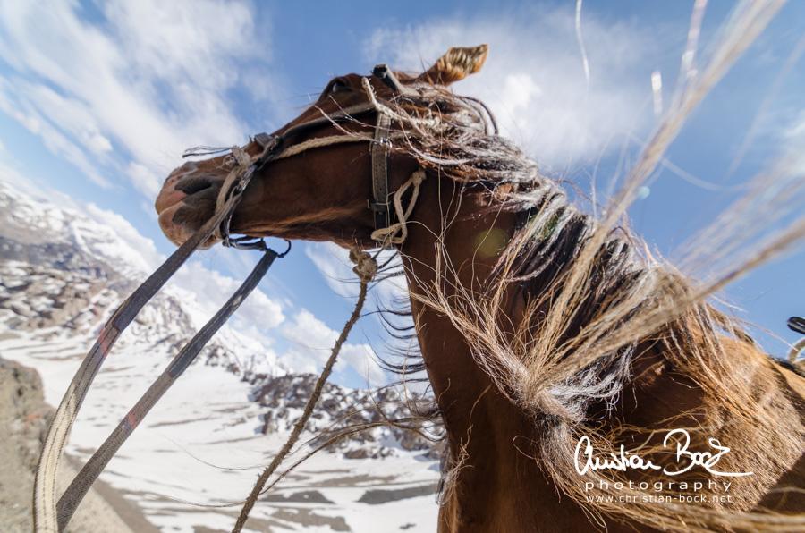 Kyrgyzstan_150619_150740-3.jpg