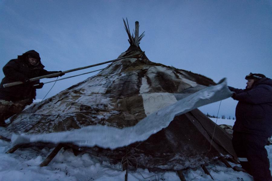 Nenets_160118_150918-2.jpg